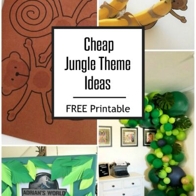 Cheap Jungle Party Theme Ideas
