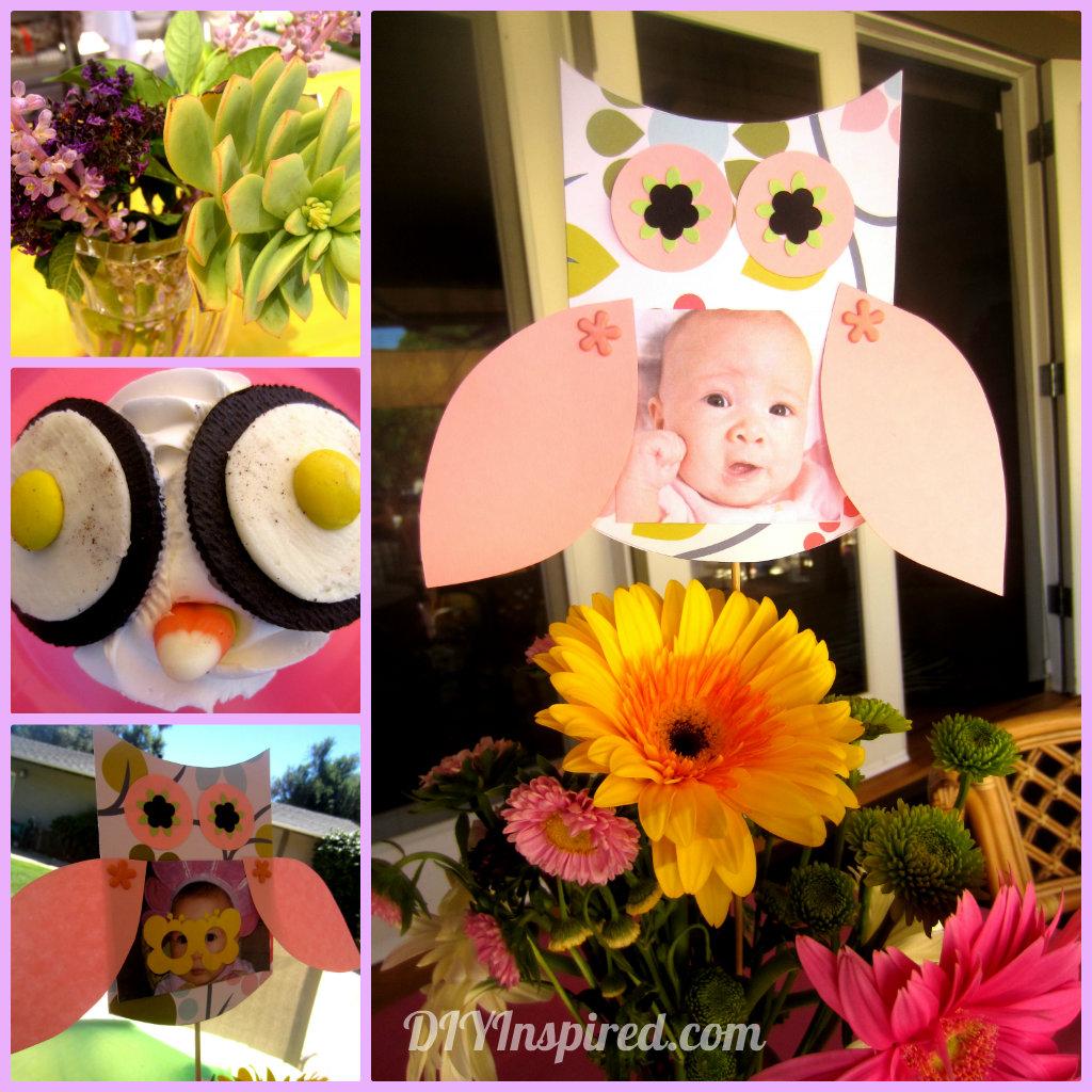 Owl Themed First Birthday Diy Inspired