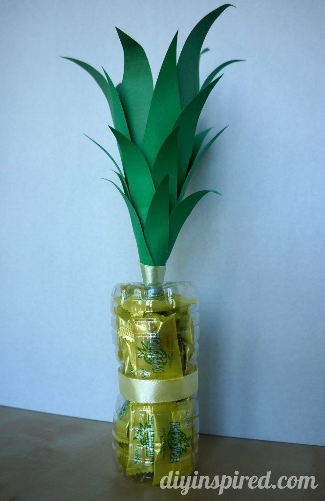 recycled-water-bottle-pineapple