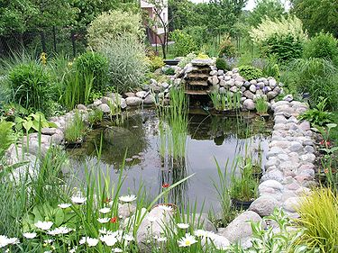 Add a Splash of Class with a Water Garden