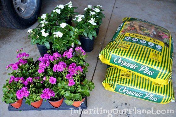 gardening-with-kids-2-560x372