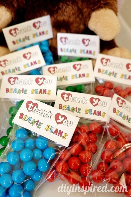 Beanie Baby Birthday Party Favors