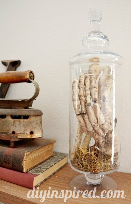 Skulls and Bones in Apothecary Jars