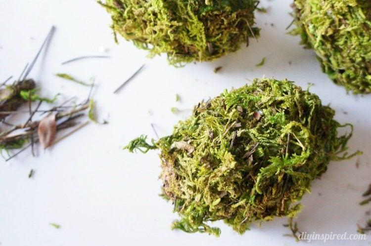 DIY Moss Eggs (4)