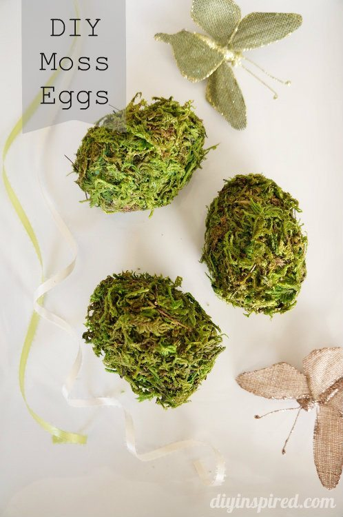 DIY Moss Eggs from Plastic Eggs