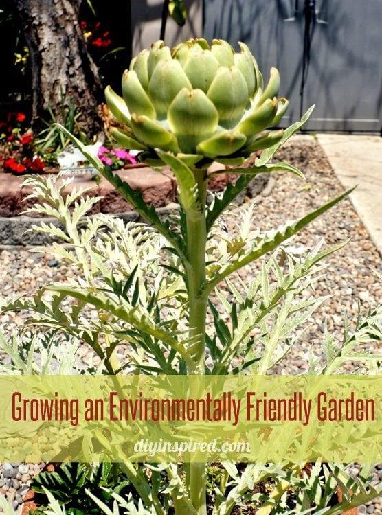 Ideas for Growing an Environmentally Friendly Garden