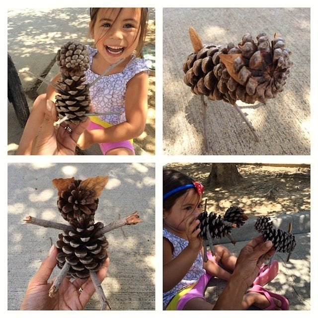 Pine Cone Pet Kids Activity
