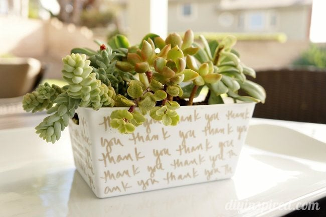 Succulent-Garden-Hostess-Gift