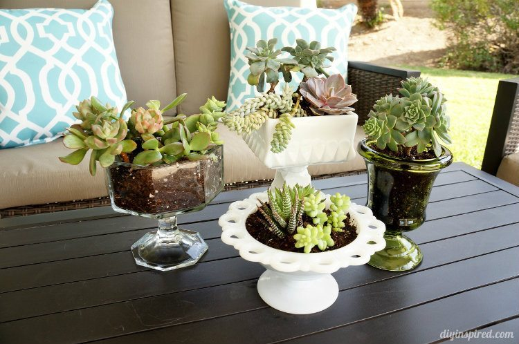 Mason Jar Herb Garden Outdoor