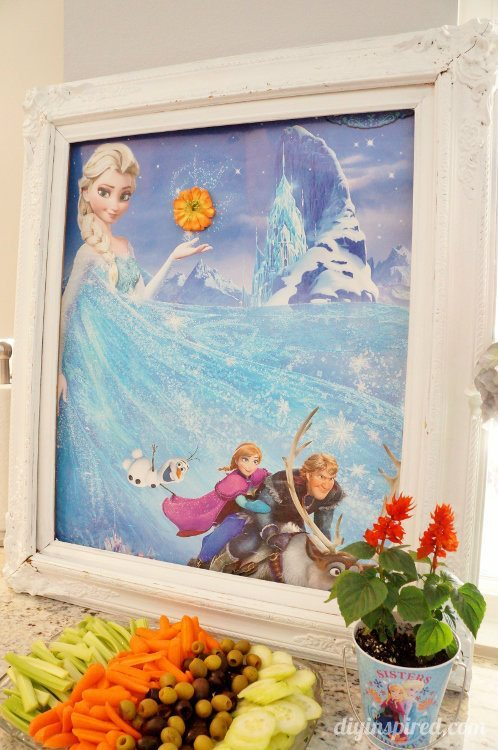 Frozen Fever Party Decor