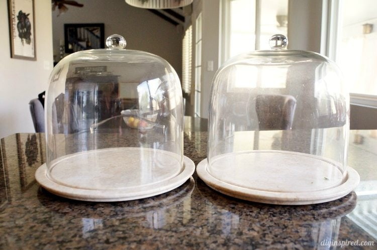 Cheese Platters with Cloche