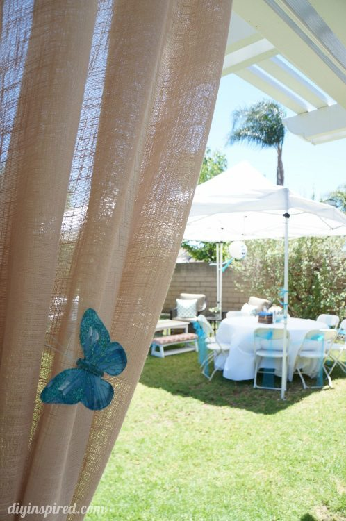 Cinderella Theme Party with Butterflies