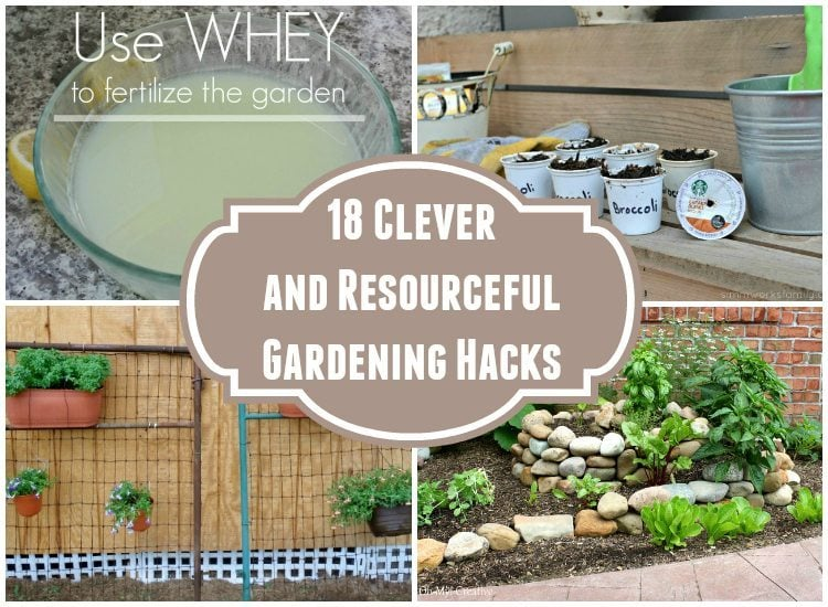 18 Clever and Resourceful Gardening Hacks