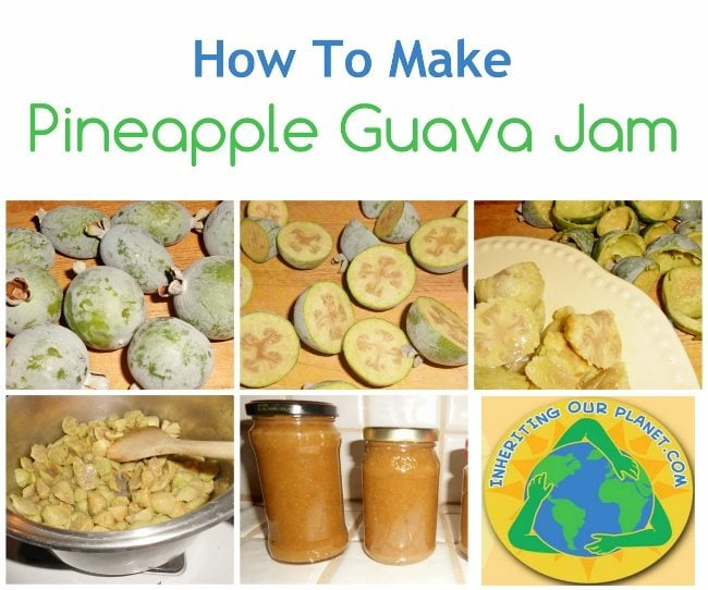 How to Make Pineapple Guava Jam