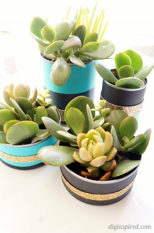 Recycled Can Centerpieces with Succulents DIY Inspired