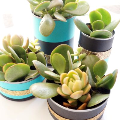 Recycled Can Centerpieces with Succulents