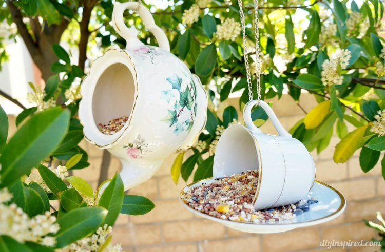 Clean Birdbaths or Bird Feeders with Vinegar