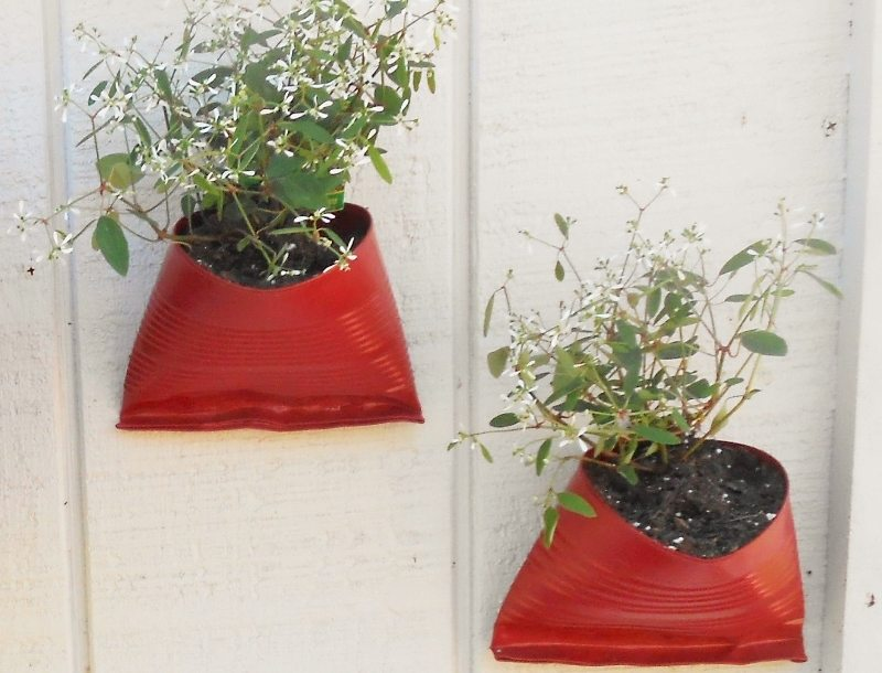 Recycled Tin Cans Become Flower Pots