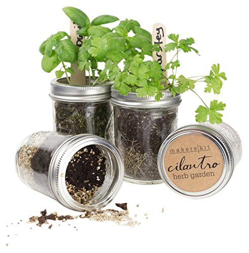 mason-herb-garden-gift-set