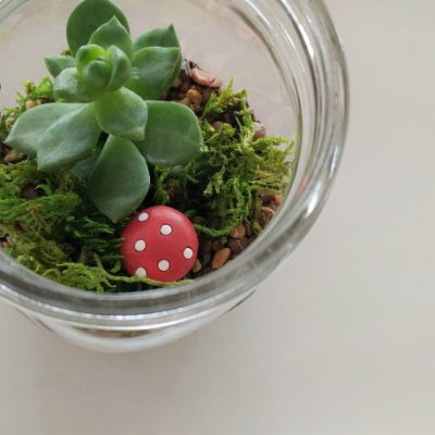 DIY Mason Jar Terrarium with Succulents