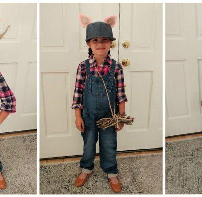 Three Little Pigs DIY Costumes