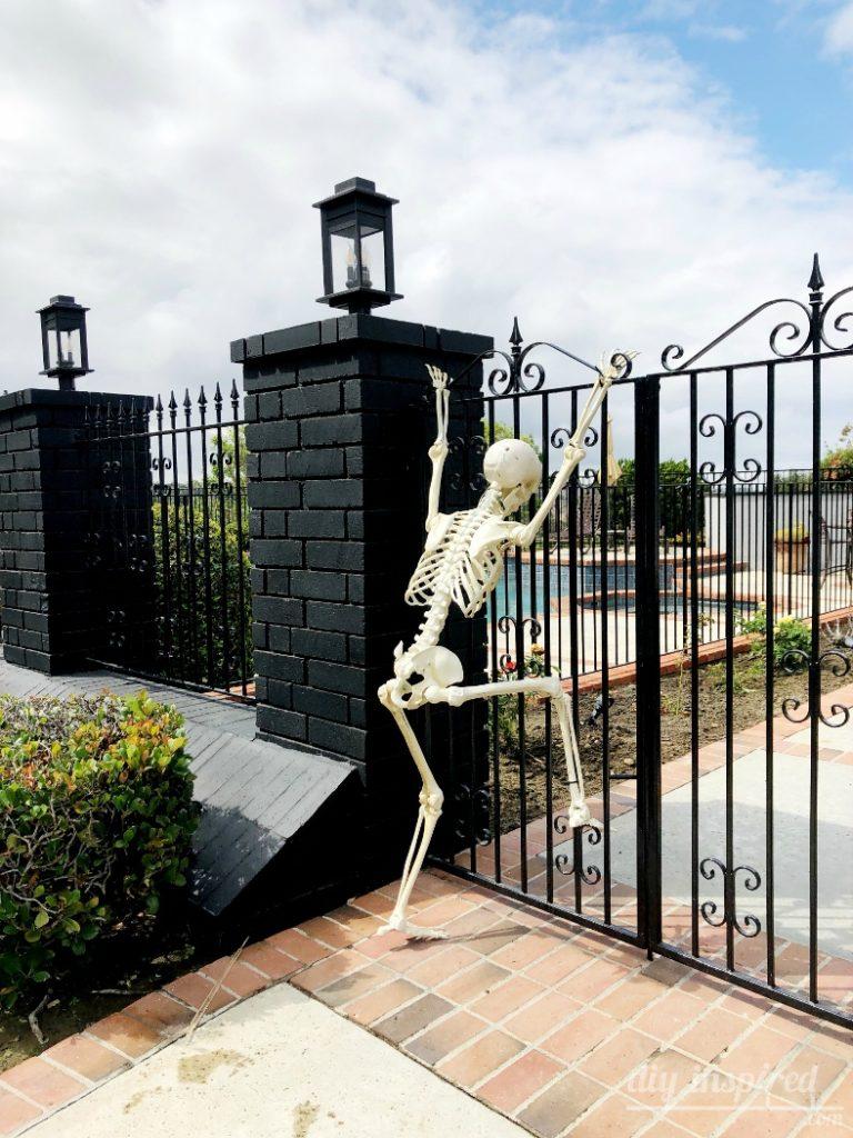 Funny Skeleton Posing Ideas