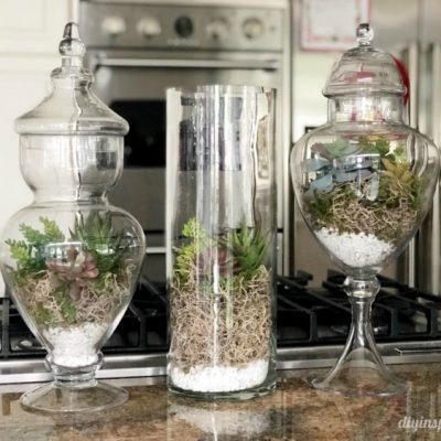 DIY Artificial Succulent Terrariums