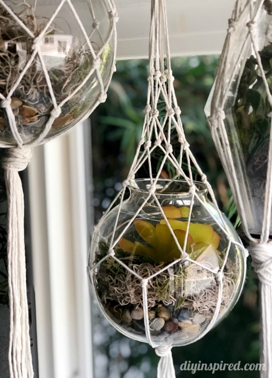 DIY Macramé Hanging Lanterns with Succulents