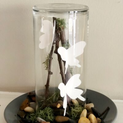 DIY Butterfly Terrarium Craft
