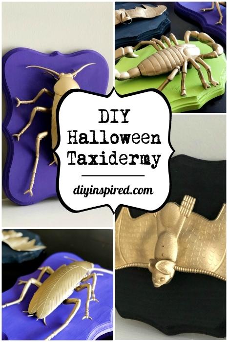 DIY Halloween Taxidermy