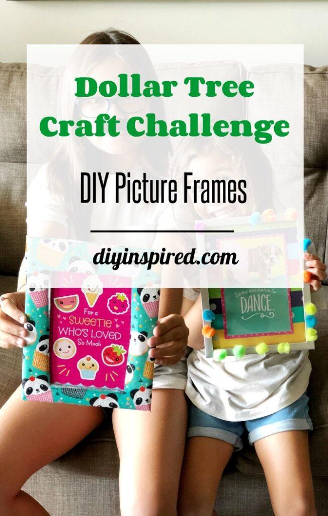 Dollar Tree Picture Frame Craft Challenge